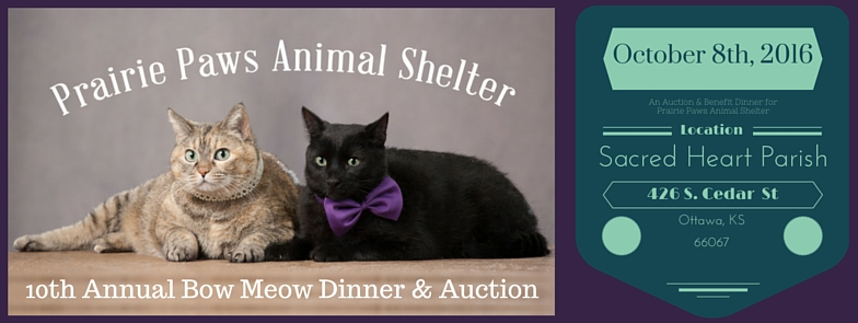 10th Annual Bow Meow Dinner & Auction