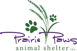 Prairie Paws Animal Shelter