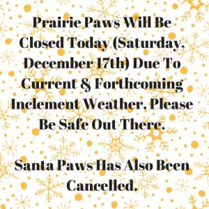 prairie-paws-will-be-closed-today-due-to-inclement-weather-please-be-safe